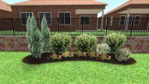 Evergreen Privacy Screening Bushes