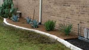 Drought Tolerant Front Yard Landscaping Bed