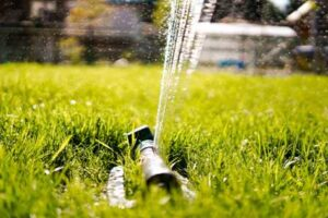 Watering Newly Installed Lawn Grass