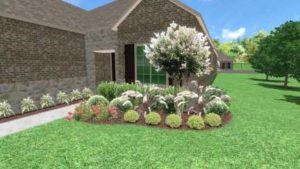 Prosper Texas front yard landscaping project featuring rose bushes and fountain grasses.