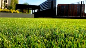 What is Artificial Turf Made Of