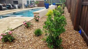New Landscaping Around a Pool