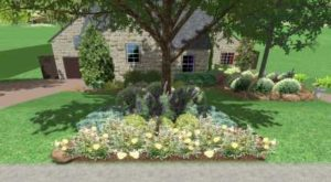 Image landscaping plants and shrubs in front of a Live Oak tree.
